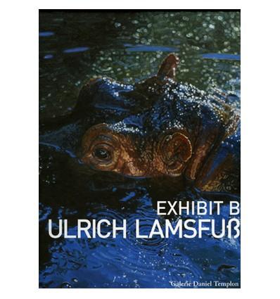 Ulrich Lamsfuss - Exhibit B